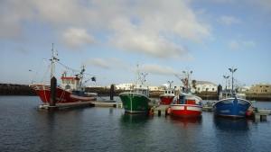 Les bateaux de pêche de la Graciosa sont les plus jolis et les mieux entretenus que nous ayons vu
