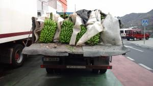 A la, usine de bananes