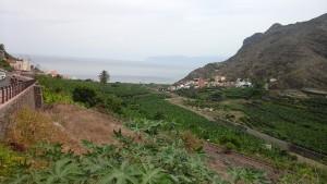 Hermigua, un jardin de cocagne